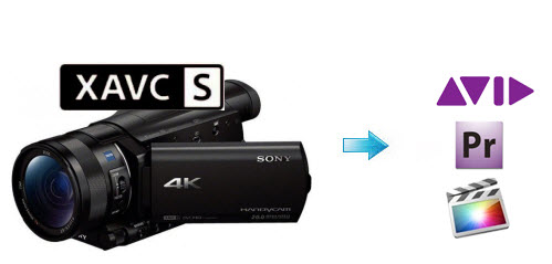 sony-ax100-to-fcp-avid-adobe.jpg